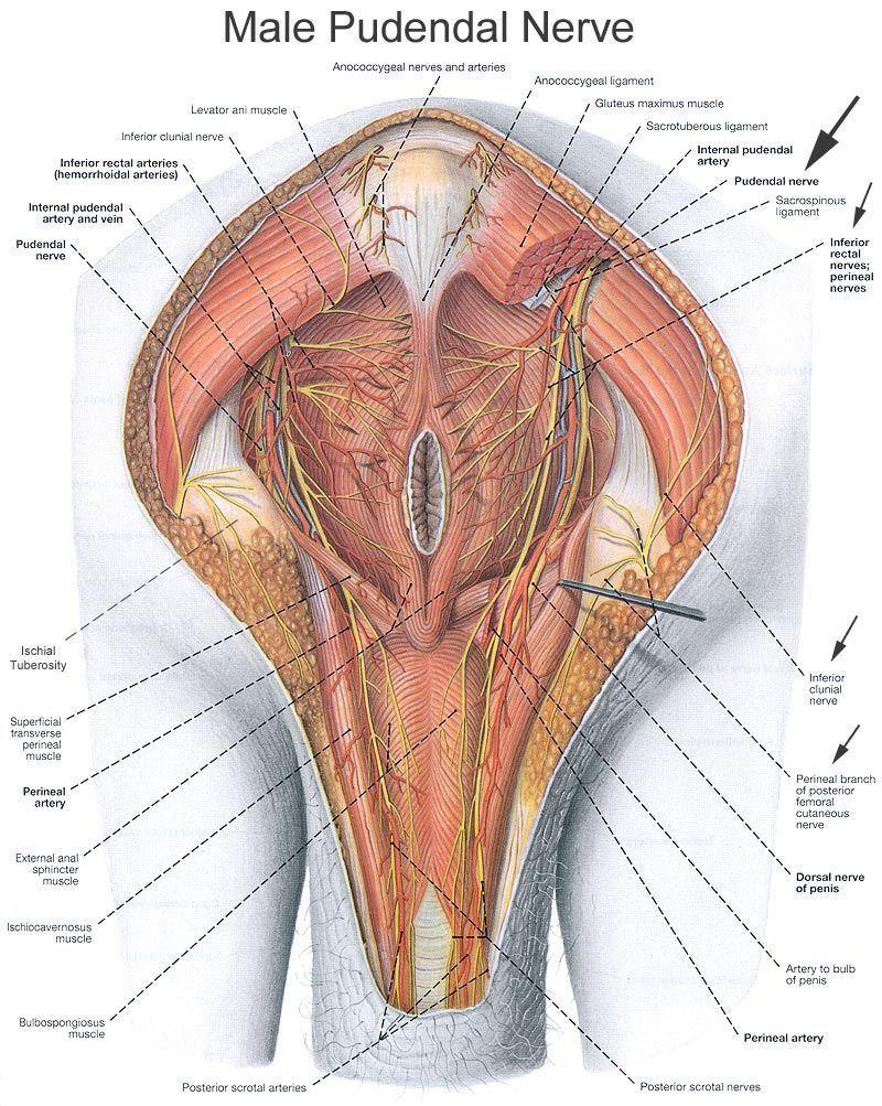 Burning in your vagina